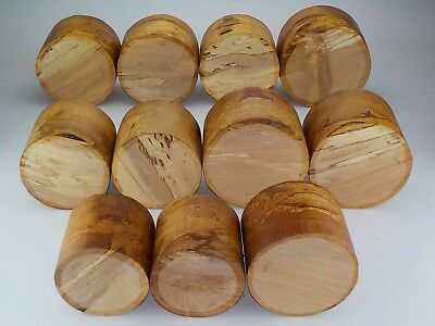 English Spalted Beech woodturning bowl blanks.  120mm thick or deep.