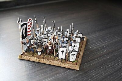 Warhammer Bretonnian 20 man Man of War unit fully painted