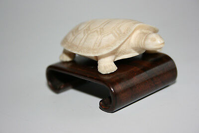 Antique Chinese Boving Bone Hand Carved Small Turtle Figurine - Wooden Stand