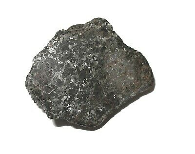Campo del Cielo Silicated Iron meteorite end cut 91.5g Rare form of this fall