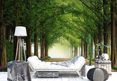 Forest Trees Passage Lane Flowers Photo Wallpaper Wall Mural (1X-1302773)