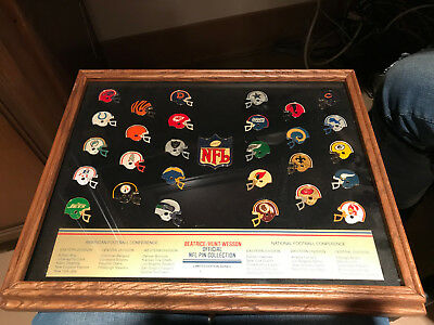 Official Nfl Pin Collection Limited Edition Series #1600 Beatrice/hunt-Wesson