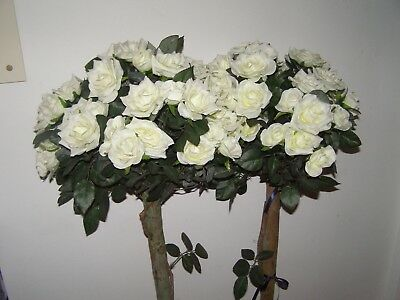 Wedding -Two Beautiful Soft White Rose Blooms  4Ft High As Per Photo Perfect.