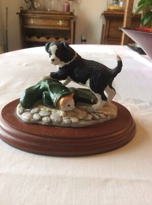 Border Fine Arts 'Not My Size' Anne Wall. Border Collie Puppy & Kitten