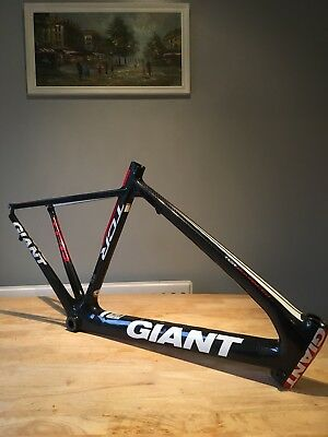 GIANT Advanced TCR Frame