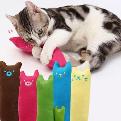 Interactive Fancy Catnip Cat Pillow Toy Teeth Grinding Claws For Pets Funny DA