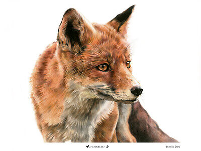"""""""Charlie"""" - Country Fox Painting Print"""