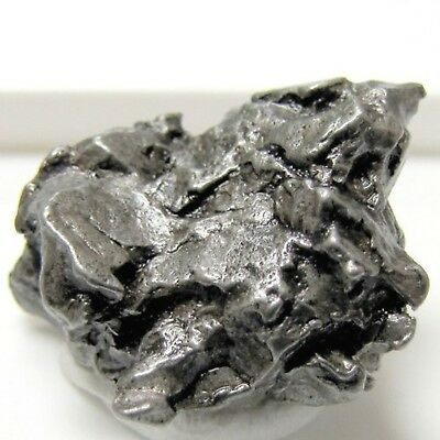 Small Hunk of Genuine Campo Del Cielo Iron Meteorite with Full Color Beverly ...