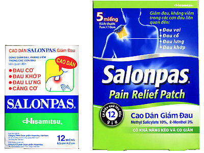 Salonpas Pain Relieving Patch Hisamitsu Bundle 5 Xlarge  Patches And 12 Patches