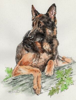 GERMAN SHEPHERD Original Watercolor on Ink Print Matted 11x14 Ready to Frame