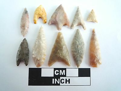 Neolithic Arrowheads x 10, High Quality Selection of Styles - 4000BC - (0393)