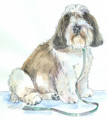 PETIT BASSET GRIFFON VENDEEN Original Watercolor on Ink Print Matted 11x14 RtoFr