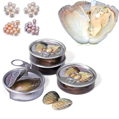 Wish Pearl Can A Oyster with Genuine Pearl Inside Necklace Jewelry accessories