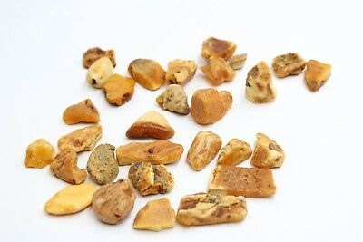 Raw amber stones from Sea egg white drop 100% natural Baltic 天然波罗的海琥珀蜜蜡 A1006