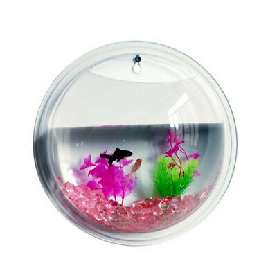New Fashion Plants Wall Mounted Hanging crylic Bowl Fish Tank (22.5X12cm) O D YS