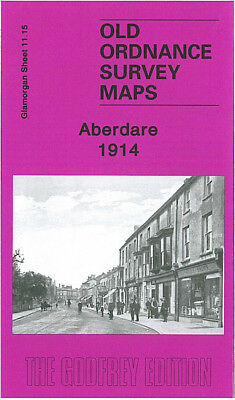Old Ordnance Survey Map Aberdare 1914 Llwynhelig Colliery Gwar Street