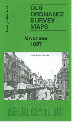 Old Ordnance Survey Map Swansea Vetch Field Mount Pleasant Pottery Bridge 1897