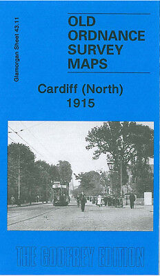 Old Ordnance Survey Map Cardiff North City Hall Roath Cathays Tredegarville 1915