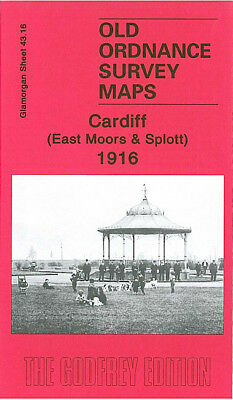 Old Ordnance Survey Map Cardiff East Moors Splott 1916 Moorland Gardens