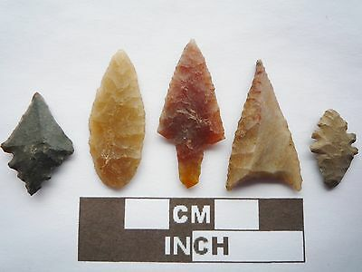 Neolithic Arrowheads x5, High Quality Selection of Styles - 4000BC - (Q102)