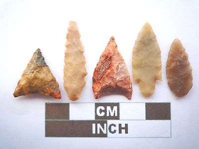 Neolithic Arrowheads x5, High Quality Selection of Styles - 4000BC - (X071)