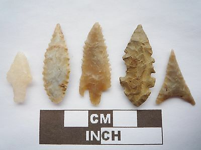 Neolithic Arrowheads x5, High Quality Selection of Styles - 4000BC - (Q074)
