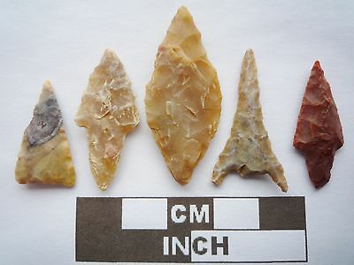 Neolithic Arrowheads x5, High Quality Selection of Styles - 4000BC - (Q107)