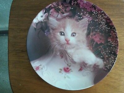 "Crestley Collection ""Fluff and Flowers"" Picture Purrfect Cat Plate"