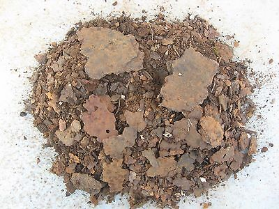 Indiana Farm Old Rust Flakes & Powder Rusty Metal Art Crafts Material Junk Oxide