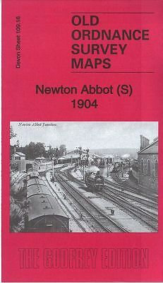 Old Ordnance Survey Map Newton Abbot South East Street Wolborough 1904