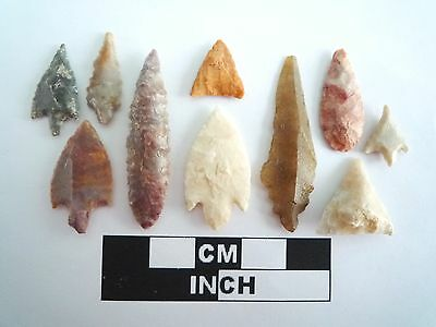 Neolithic Arrowheads x 10, High Quality Selection of Styles - 4000BC - (0391)
