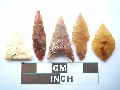 Neolithic Arrowheads x5, High Quality Selection of Styles - 4000BC - (X053)