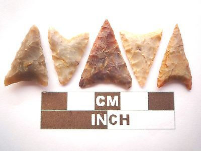 Neolithic Arrowheads, 5 x Triangle Style Artifacts - 4000BC - (Z058)