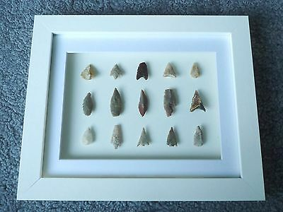 Neolithic Arrowheads in 3D Picture Frame, Authentic Artifacts 4000BC (W015)