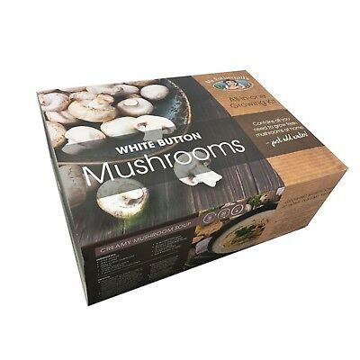 Mr Fothergill's All-In-One White Button Mushroom Growing Kit