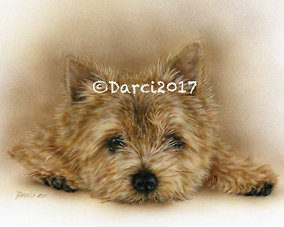 Norwich Terrier note cards  add a short message inside Free