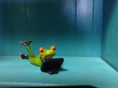 Frog Laying down working on his laptop Figurine NIB