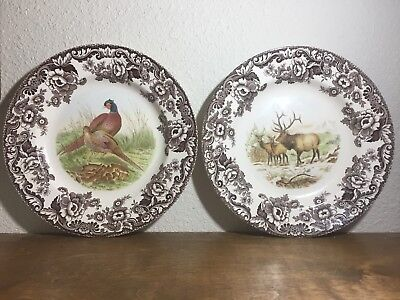 Elk Dinner Plates Albertson Wild Animals Coupe 36 Piece Dinnerware Set Service For 12 Sc 1 St Wayfair