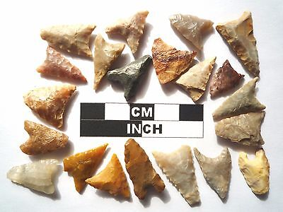 20 x Triangle Style Neolithic Arrowheads - 4000BC - (986)
