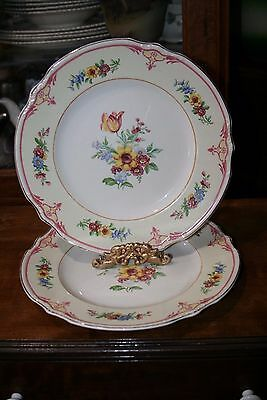 2 Flower hand painted  Plates, J&G Meakin England, #391413 Plate dish, platters