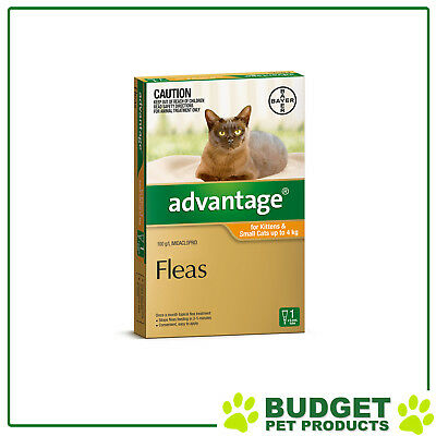 Advantage For Kittens and Small Cats Up To 4kg Single Dose