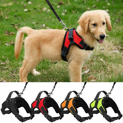 Dog Leash Harness Set Adjustable Durable for Small Medium Large Pet Dog Walk Run