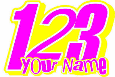 NEW ! CUSTOM PUNK PISTOLS RACE NUMBERS PLUS NAME DECALS GRAPHICS  x3
