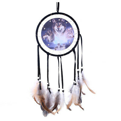Dream Catcher with Animal Pattern of Wolf D9G3