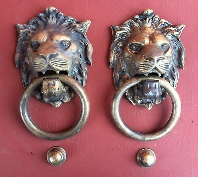 "Superbig beautiful Genuine pair Lion head Bronze Door Knocker Screw 9 "" inches"