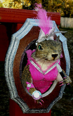 """Taxidermy Gray Squirrel """"busty"""" Lounge Singer/diamond Ring/earrings/""""bling"""" Fox"""