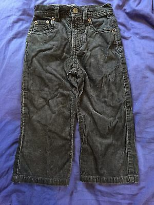 Gorgeous Boys Polo Ralph Lauren Corduroy Pants - Size 2