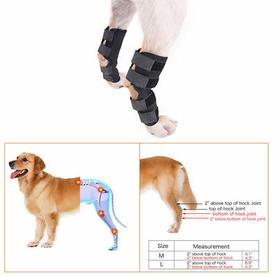Hock Knee Brace For Pet Dog 2Pcs ACL Therapeutic Hind Legs Adjustable Protectors