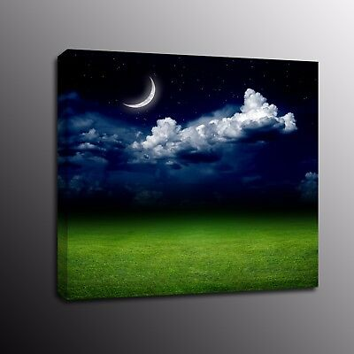 Landscape HD Canvas Prints Star prairie Wall Art Moon Painting Picture