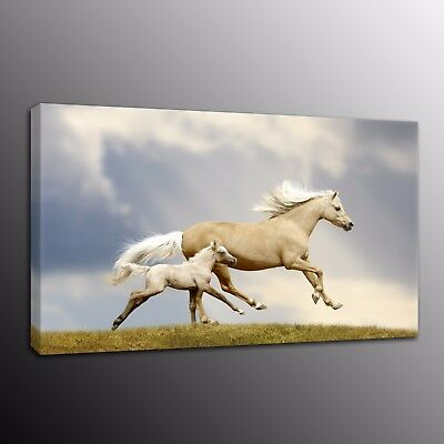 Animals Canvas Print Painting Running Horses Wall Art Pictures Home Decor